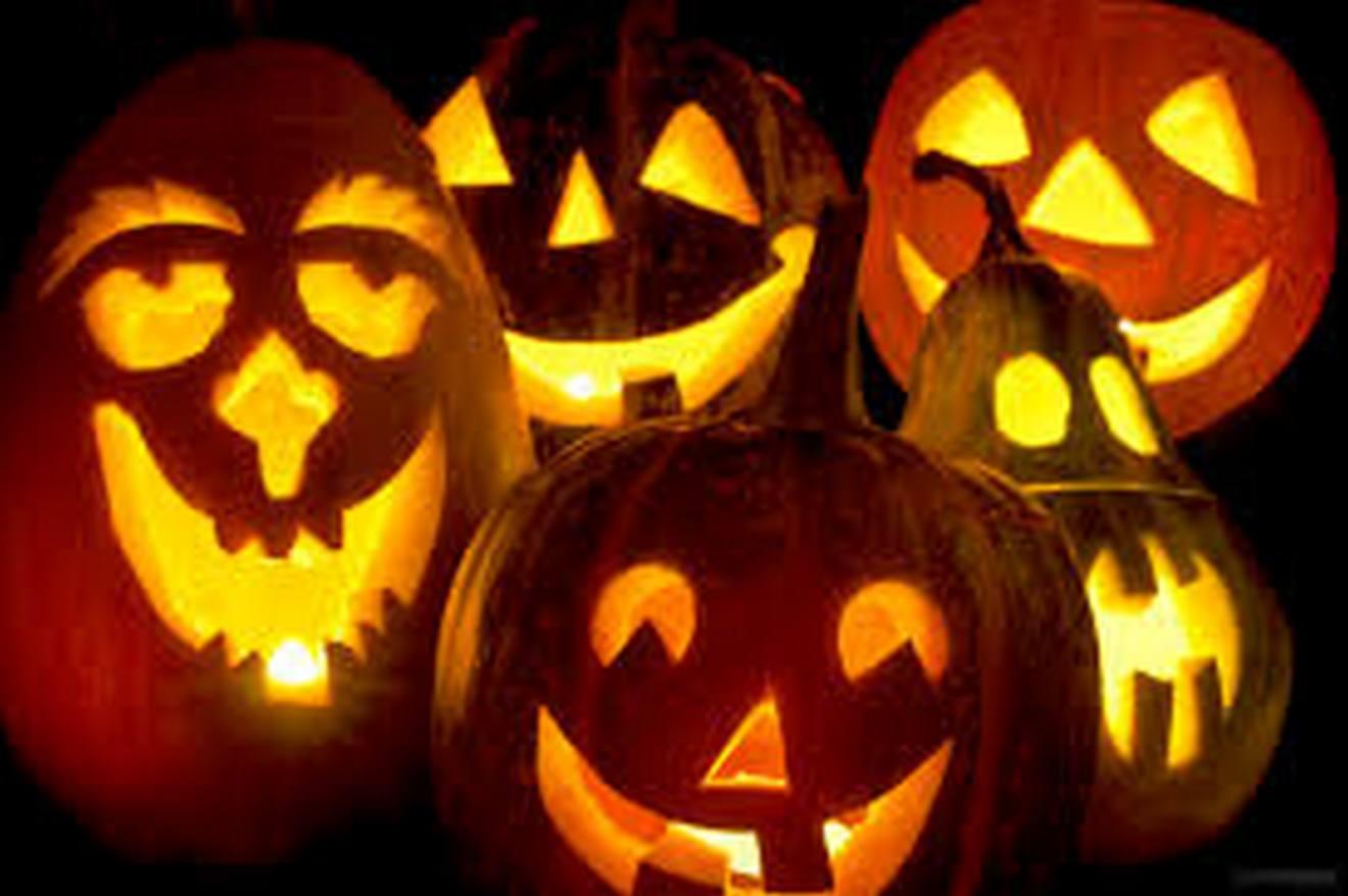 Grooming day di halloween al rifugio degli asinelli - Sala biellese asini ...